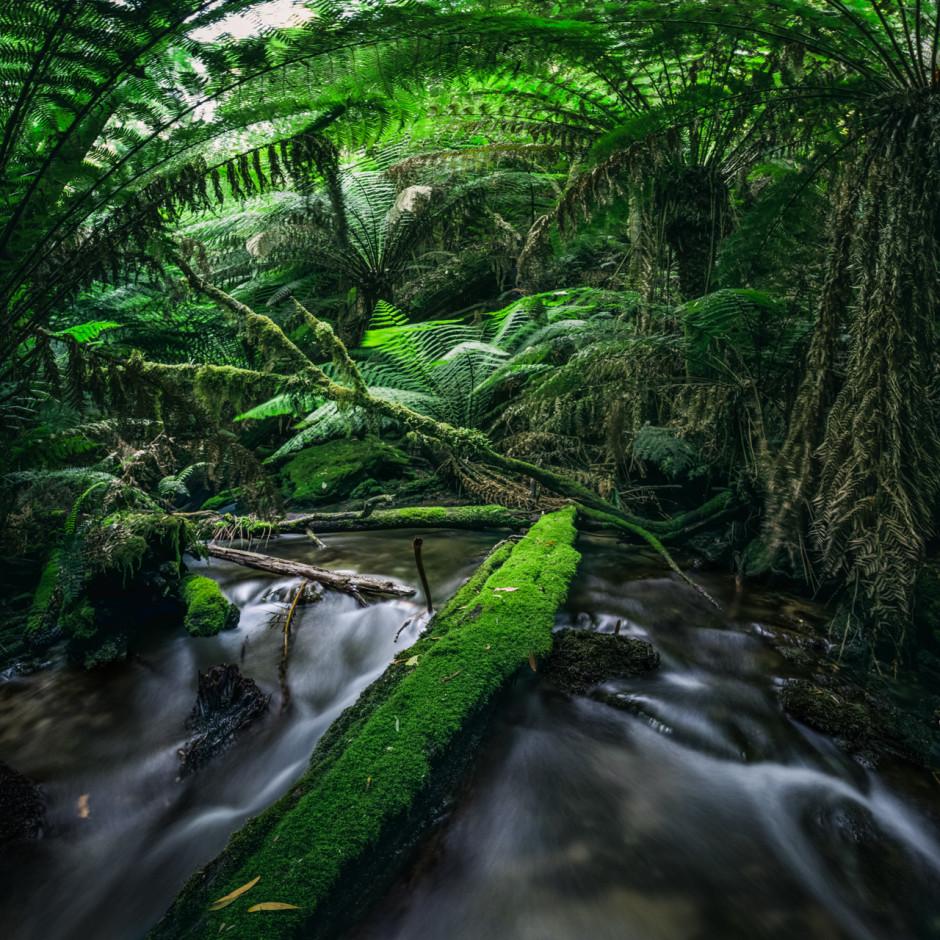 Matt-Glastonbury-Tasmania-21-940x940