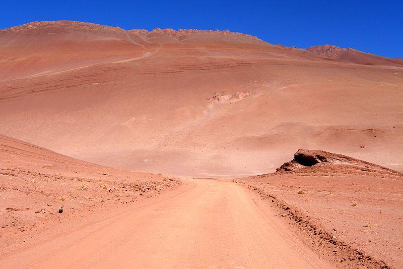 Puna Argentine