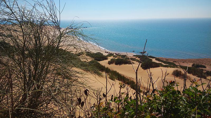 plage d'Algérie