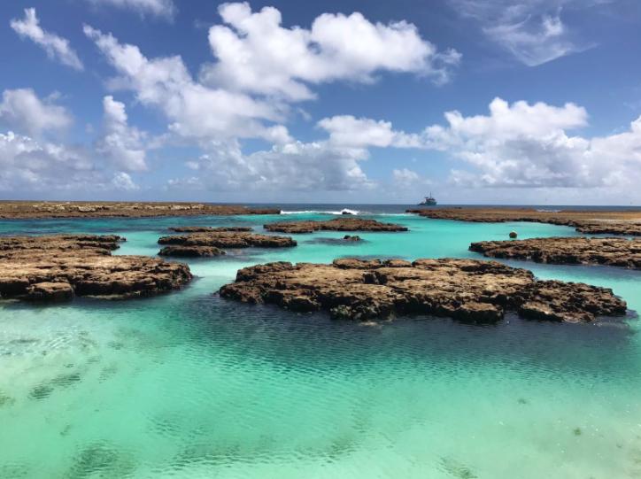 Atol das Rocas - îles atlantiques brésiliennes