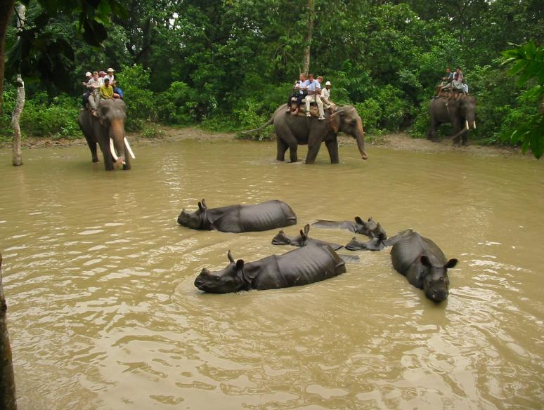 Chitwan, Népal