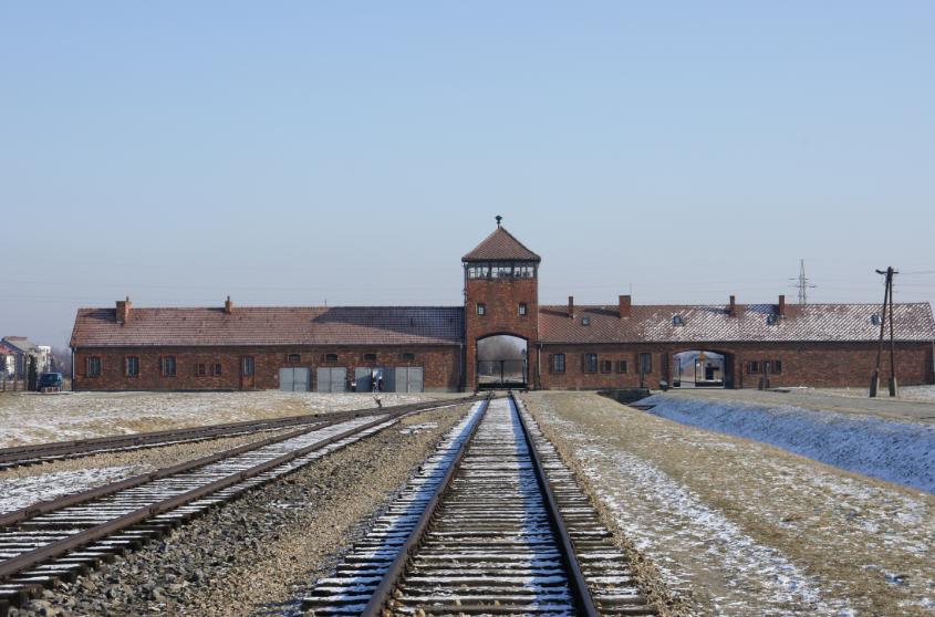 Auschwitz, Allemagne