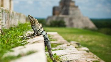 ruines maya, Mexique