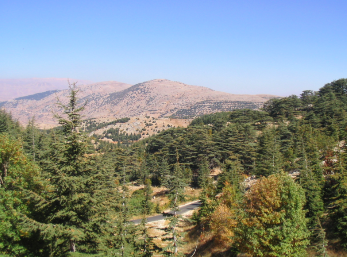 Barouk moutain, Liban