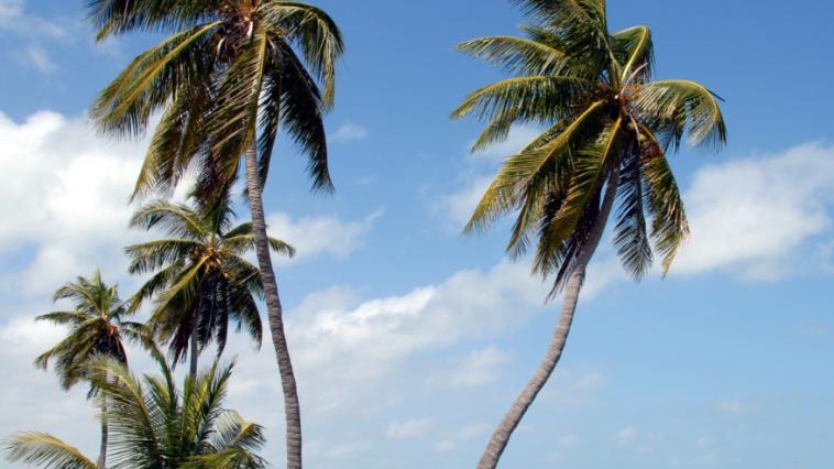 Archipel des Keys, Floride