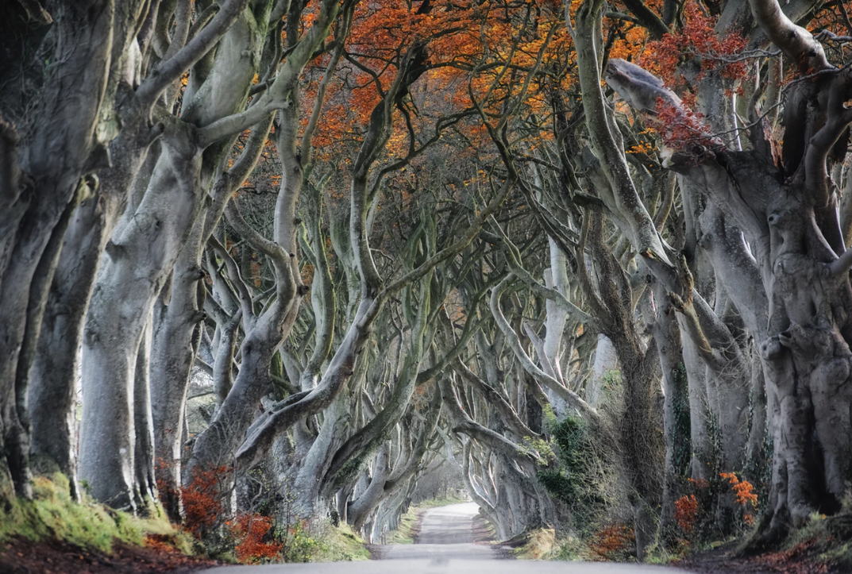 Comté d'Atrim, Irlande