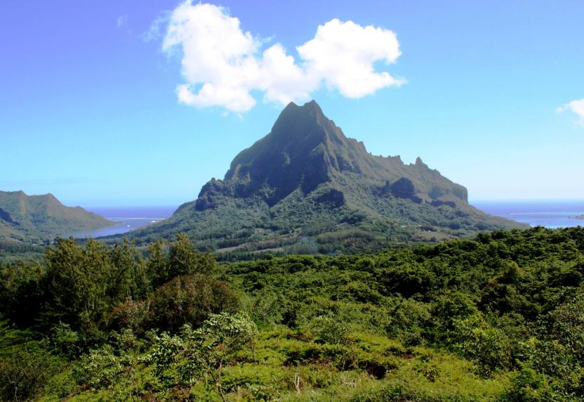 baie de Cook, Polynésie française