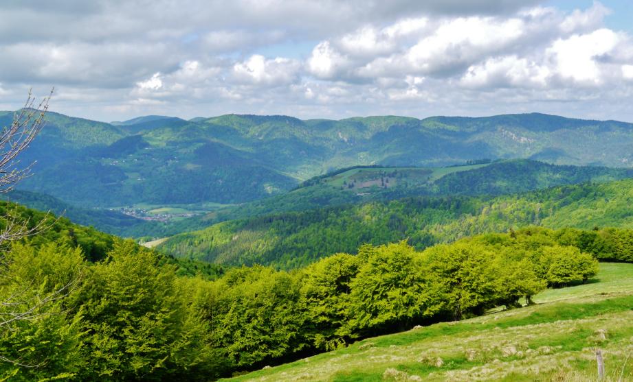 route des Crêtes Alsace