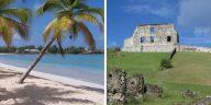 château plages de cocotiers sable fin
