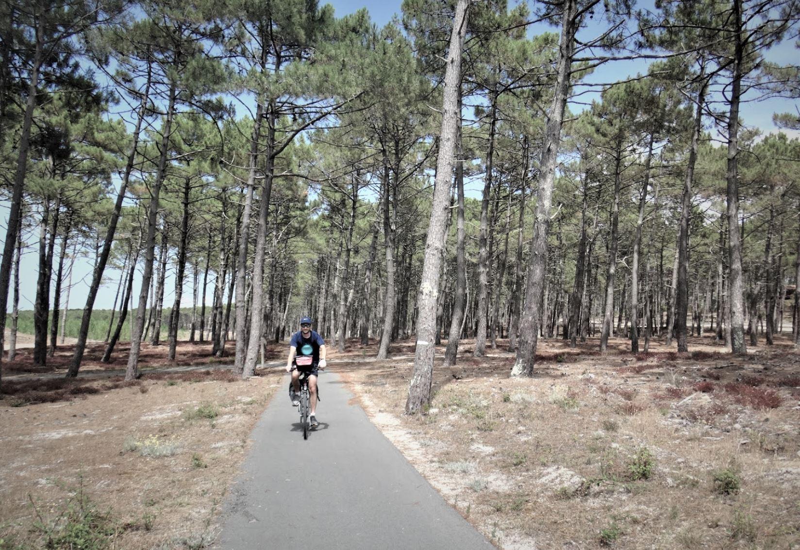 voyage vélo Gironde pyla forêt pins