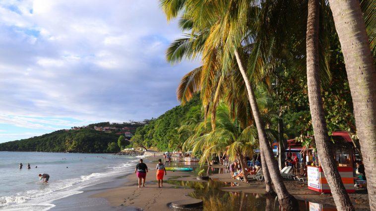 plage de Malendure Guadeloupe sable cocotiers
